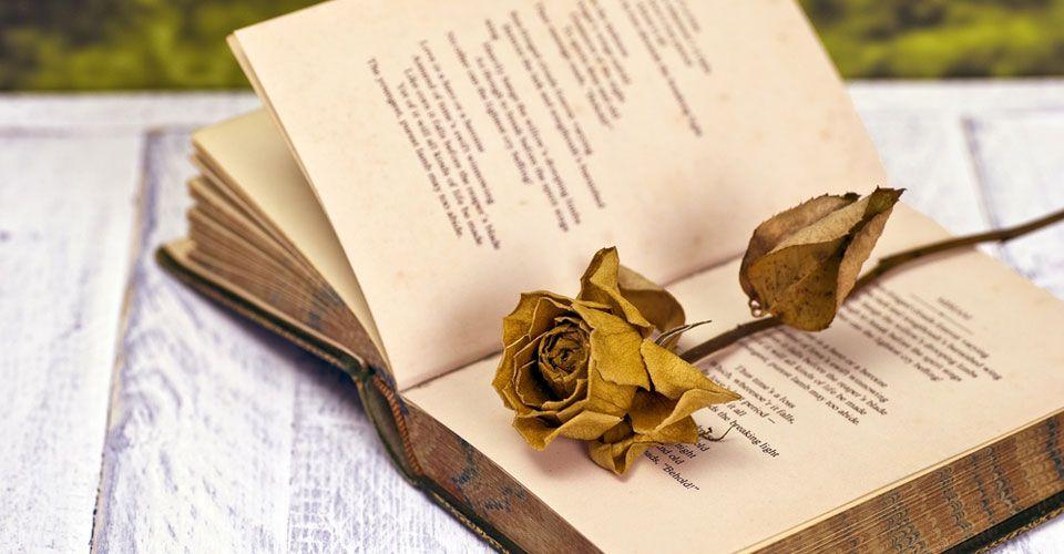 Τα ποιήματα της Βίκης